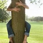 peron huggin tree
