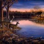 deer by lake